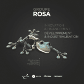 DEP-RosaGroup.-BDef